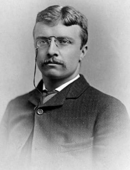 THEODORE ROOSEVELT: HOW WE OVERTHREW CORRUPT TAMMANY HALL